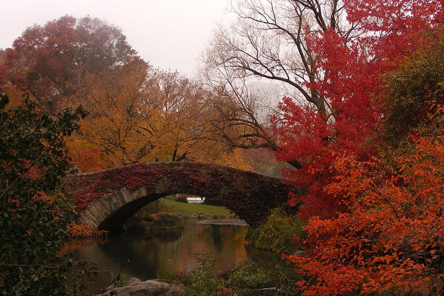 AutumnTransformation04.jpg