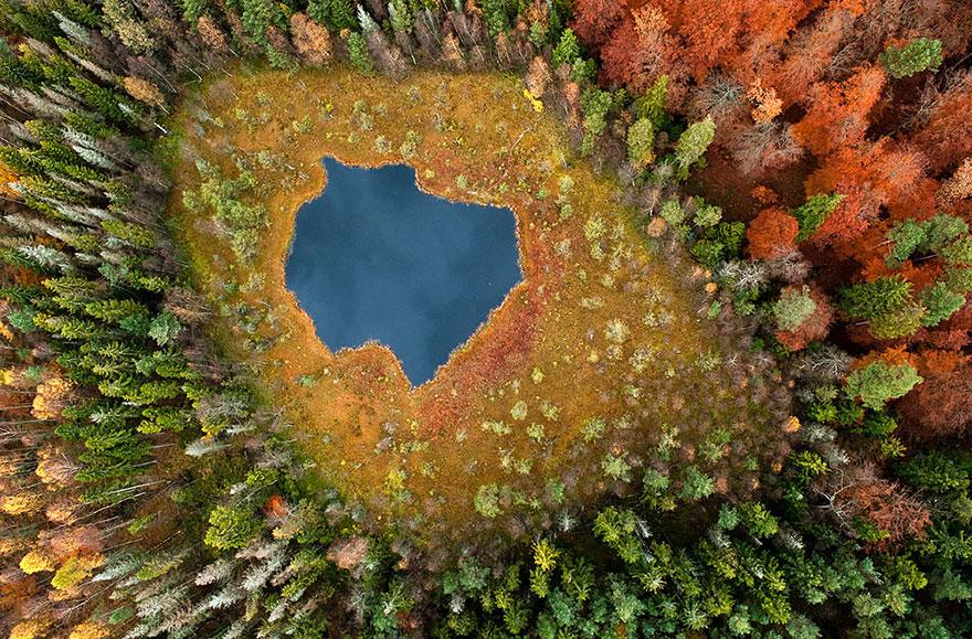 AutumnTransformation09.jpg