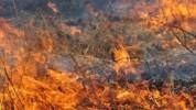 Այրվել է մոտ 8 տոննա անասնակեր