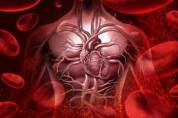Ինչպե՞ս բարելավել արյան շրջանառությունը