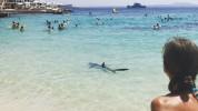 На Мальорке несколько пляжей эвакуировали из-за акулы (видео)