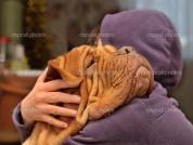 Любящая обниматься собака стала звездой соцсетей