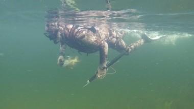 Подводная охота на щуку Владимира Путина
