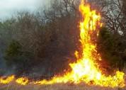 Կրակը կարող է կրկին ակտիվանալ. մանրամասներ Վայոց ձորի մարզում բռնկված հրդեհի մասին