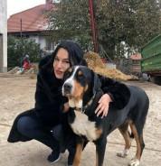 Կենդանիների պաշտպանության կենտրոնից նամակ ստացա. Նաիրա Զոհրաբյան