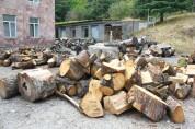 Ապօրինի անտառահատումների քրեական գործով մեղադրանքներ են առաջադրվել 5 ղեկավար պաշտոնատար ան...