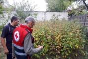 Շիրակում կարկուտից առավել տուժած ընտանիքներին ՀԿԽԸ-ն մարդասիրական օգնություն կտրամադրի