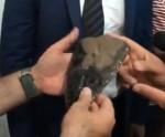 Հրաշք ենք գտել. Փաշինյանի՝ Գորայք այցի ժամանակ 200 000 տարեկան գտածո ներկայացրին