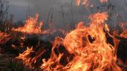 Էջմիածին-Մարգարա ավտոճանապարհին այրվել է խոտածածկույթ և մոտ 30 հակ անասնակեր