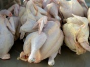 Թռչնամսի սպառումը Հայաստանում աճում է