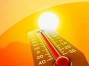 Հնդկաստանում շոգը դարձել է 29 մարդու մահվան պատճառ