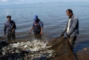 Սևանա լճում ձկնորսության արգելքի ժամկետները կհստակեցվեն առաջիկա օրերին