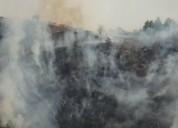 Հրազդանի կիրճում այրվում է խոտածածկ տարածք. ԱԻՆ (տեսանյութ)