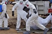 Կոնգոյում Էբոլա վիրուսի պատճառով մահացածների թիվը հասել է 42-ի