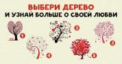 Ձեր զգացմունքների բոլոր գաղտնիքները՝ մի վայրում. ընտրեք ծառը