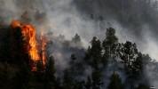 Վայոց Ձորում 105 հա խոտածածկույթ է այրվել. հրդեհաշիջմանը մասնակցել են 49 հրշեջ-փրկարար, տա...