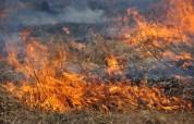 Խաչիկ գյուղում այրվում է մոտ 50 հա խոտածածկույթ