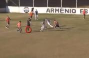 Մրցավարը գոլային փոխանցման հեղինակ է դարձել (տեսանյութ)