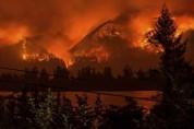 ԱՄՆ-ում դատարանը 15-ամյա դեռահասին պարտավորեցրել է մոտ 37 մլն դոլար տուգանք վճարել անտառը ...