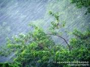 Արտակարգ իրավիճակ Երևանում.  հորդառատ անձրևի հետևանքով բնակելի շենքերում և շինություններու...