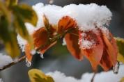 Ջերմաստիճանը Հայաստանում փոքր-ինչ կբարձրանա