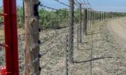 Թուրքիայում Հայաստանի քաղաքացու են ձերբակալել