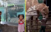 Այս մարդիկ հավերժ կհիշեն իրենց այցելությունը կենդանաբանական այգի (զվարճալի ֆոտոշարք)