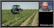 Դեռ 1999-ի գյուղատնտեսական ապահովագրության պիլոտային ծրագիրը  պատվեր է եղել, գումարի լվացո...