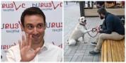 Քաղաքապետը կատակու՞մ է. իրավապաշտպանը՝ Երևանում տնային կենդանիների համար տուրք սահմանելու ...