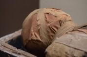 Բնակարանում հայտնաբերվել է մումիայի վերածված կնոջ դի և երկտող