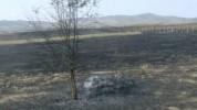 Այրվել է խաղողի այգի և փայտե տնակ