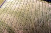Իռլանդիայում անօդաչու սարքի օգնությամբ նոր «Սթոունհենջ» են հայտնաբերել