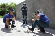 Աշտարակի տներից մեկի նկուղում  գյուրզա տեսակի օձ է նկատվել