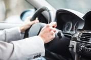 Վրաստանում տուգանում են Ռուսաստանից ժամանող հայ վարորդներին. «Փաստ»