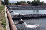 Ապամոնտաժել է ձկնաբուծարանը սնուցող մետաղական խողովակները (տեսանյութ)