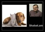 Ինչու՞ է ընտանի կենդանիների համար տուրքի վերաբերյալ օրենքը մեծ աղմուկ բարձրացրել