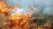Արփունք գյուղում այրվել է մոտ 400 հակ անասնակեր