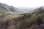 Արցախի Հանրապետության և Ադրբեջանի սահմանի չեզոք գոտում հայտնաբերվել է ադրբեջանցու դի