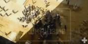 Հրապարակվել է Մոսկվայում հայ և ուզբեկ շինարարների միջև զանգվածային ծեծկռտուքի տեսանյութը (...