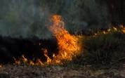 Սյունիքի Ծավ համայնքի անտառամերձ տարածքում հրդեհ է բռնկվել