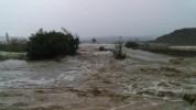 Հորդառատ անձրևը ողողել է հողատարածքները և խաղողի այգիները