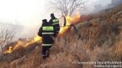 Երևանում այրվել է 5000 քմ խոտածածկույթ, վագոն տնակ և ավտոմեքենայի թափք