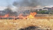 Սվերդլով գյուղում մոտ 470 հակ անասնակեր է այրվել