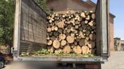 Լոռու մարզում ապօրինի ծառահատման դեպք է բացահայտվել․ վարորդը փայտանյութի օրինականության վե...