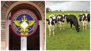 Ադրբեջանցիները բացահայտ հափշտակել են Ճարտար գյուղի բնակչի 32 կովն ու 13 հորթը