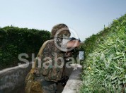 Հայ զինվորի սպանության հետքերով