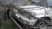 Երևանի Մամիկոնյանց փողոցում ծառը տապալվել է մեքենայի վրա