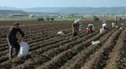 «Ժողովուրդ». ՀՀ-ում գյուղատնտեսությունը շարունակում է անկում ապրել.մարդիկ սերմացու չունեն