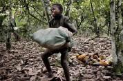 Նիգերիայում «երեխաների ֆաբրիկայից» տղաներին և աղջիկներին փրկել են ստրկությունից և մարմնավա...