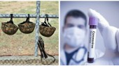 Երեք զինծառայողների մոտ ախտորոշվել է կորոնավիրուս. Դավիթ Տոնոյան